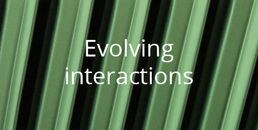 Evolving interactions