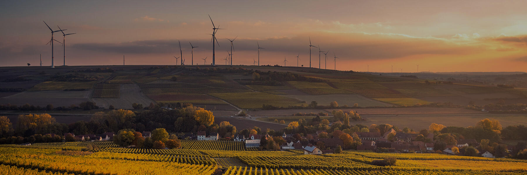 Wind turbines on a hillside