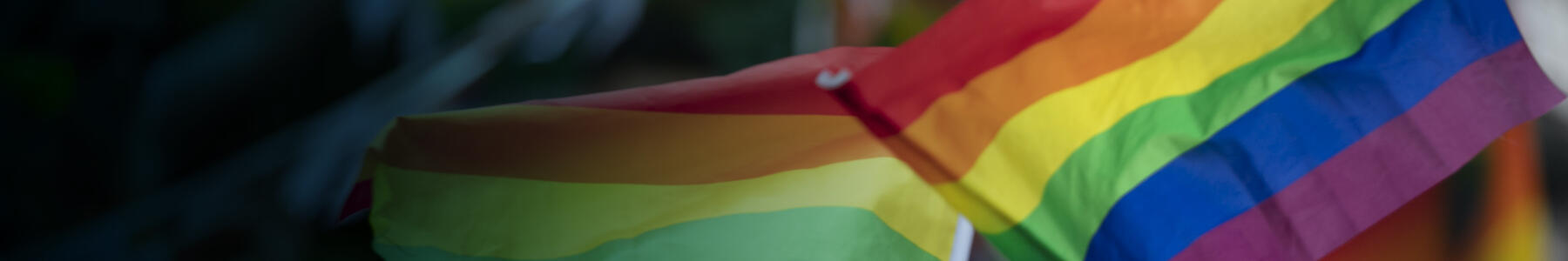 LGBTQIA+ in Tech at Thoughtworks