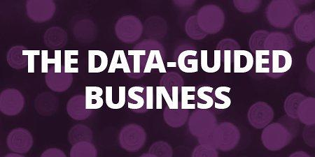 the data guided business