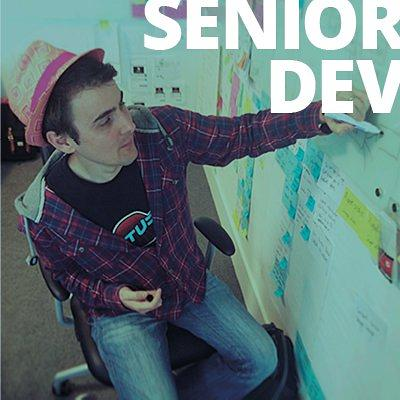 Senior developer - click here for description and to apply