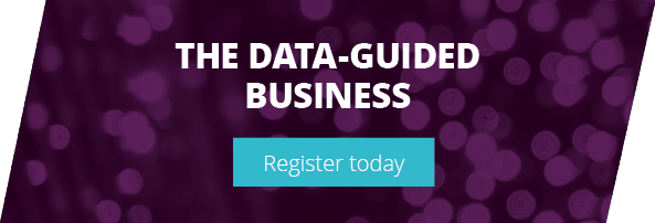 THE DATA-GUIDED BUSINESS - Register your interest