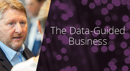The Data-Guided Business