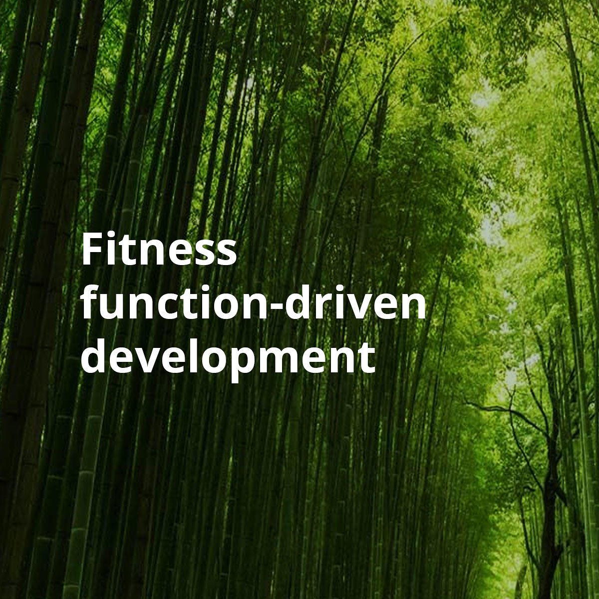 Fitness function-driven development